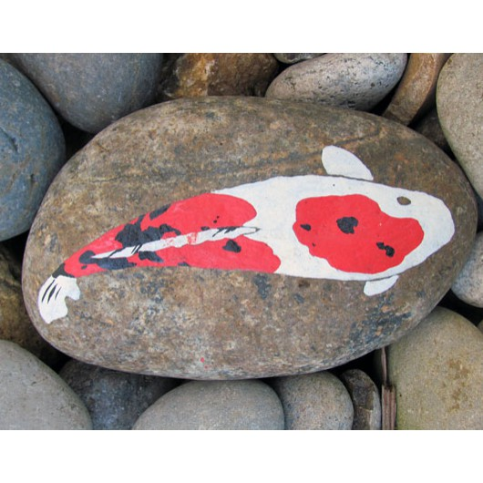 Painted Koi rock in dry river bed