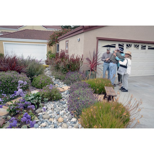 Dry river bed actually functions to direct excess rain water away from driveway and garage